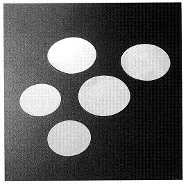 Polycarbonate Membrane